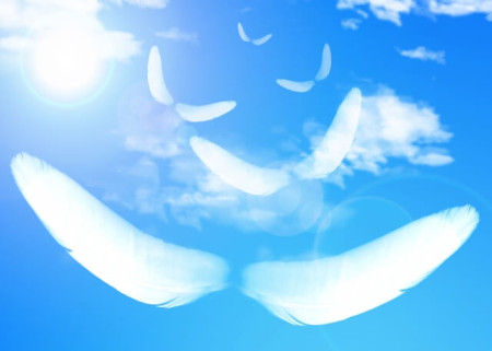 配慮する心は想像の翼を優しく広げて育まれる